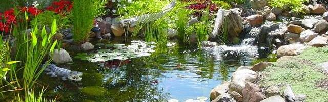 Water evaporates during windy or hot weather, leading to the water level in garden ponds dropping.